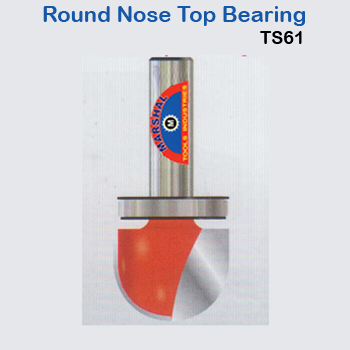 Round-nose-top-bearing-ts